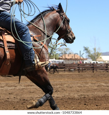 A horse running at a rodeo.