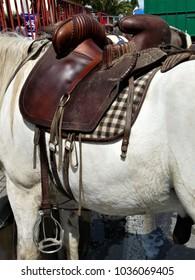 horse saddle from camargue