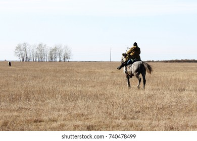 horse shepherd steppe