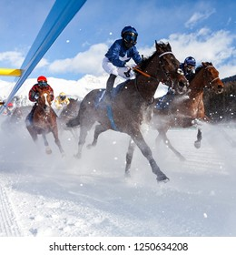 Horse show - Engadine - Switzerland