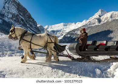 Horse and sled in frigid February temperatures at Lake Louise, Alberta, Canada