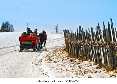 Horse sledge in action on snow in winter landscape.