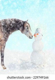 Horse and snowman in snow