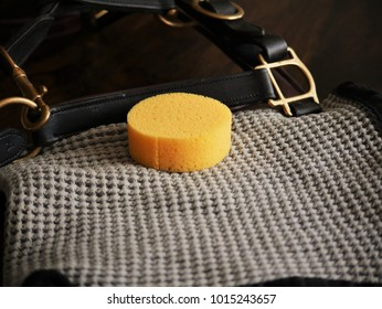 horse tack cleaning