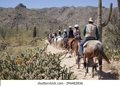 Horse tour, guided horseback riding, in the Sonoran Desert outside of Phoenix, Arizona with Saguaro Cacti in Spring