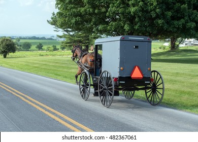 horse wagon buggy in lancaster pennsylvania amish country