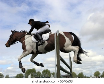 A horse well clear of the jump