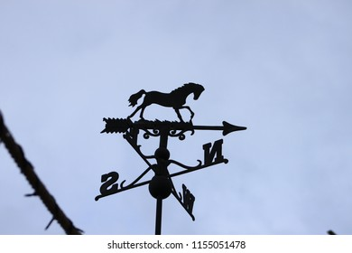 Horse wind direction