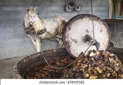 Horse working in millstone, crushing maguey in mezcal factory. This picture was taken at Oaxaca, Mexico.