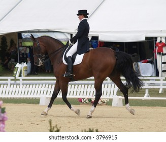 Horse of The Year Dressage Test