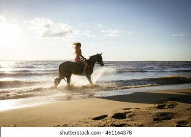Horseback horse riding on coastline at the beach on sunset background