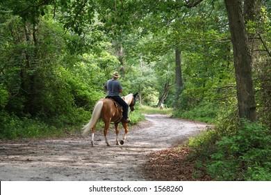 Horseback Rider - 3