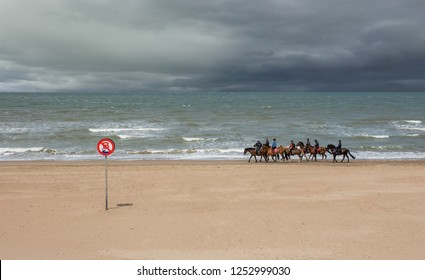 Horseback riding along the Belgian Coast