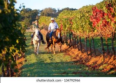 Horseback riding couple in a vineyard in autumn