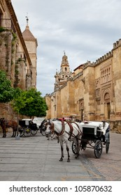 Horse-dawn carriage next to the Mosque of Cordoba, Spain