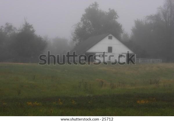 Horsefarm in the fog.Kentucky.