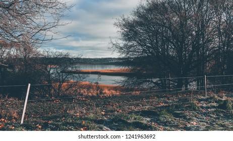 Horsens, Horsens Municipality - November 27 2018: View of Nørrestrand with trees