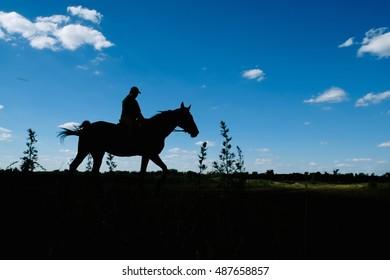 horserider silhouette
