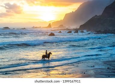 Horseriding at ocean beach on sunset background. Canary island.