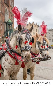 Horses carriages at Main square called Rynek Glowny in Krakow, Poland