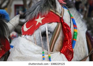 Horse's eye with flag and ornament on the frozen Cildir Lake (Cildir Golu) in Ardahan nearby Kars, Turkey