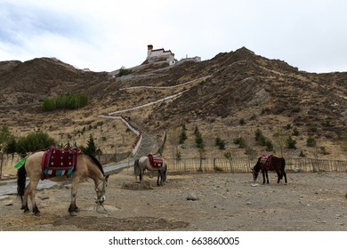 Horses at foot of the mountain with the monastery on the top of the mountain.