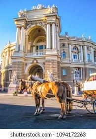 Horses in front of the Odessa Opera Theater. In Odessa, Ukraine
