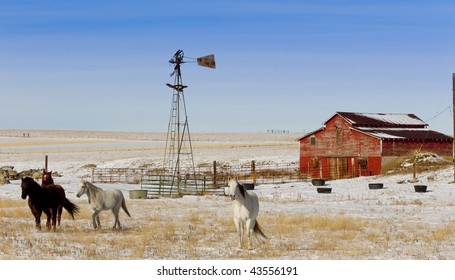 Horses galloping in front of an old barn and windmill on a cold snowy day.
