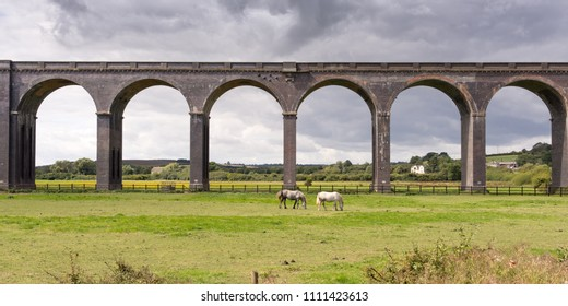 Horses graze in a field beneath the traditional arch spans of the Welland Viaduct on the Midland Railway's Oakham line, on the border of Northamptonshire and Rutland in England's Midlands.