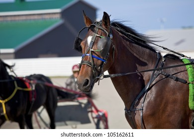 Horses in harness racing around the track.