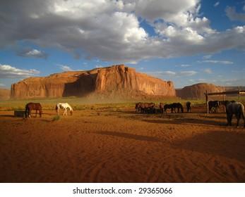 Horses in Monument Valley, Utah, USA