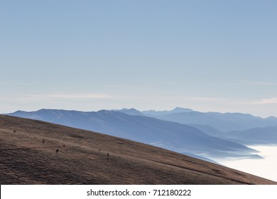 Horses on a mountain peak, with a valley filled by fog underneath and distant mountains