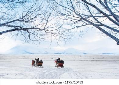 Horses pulling sleigh in winter - Cildir Lake, Kars