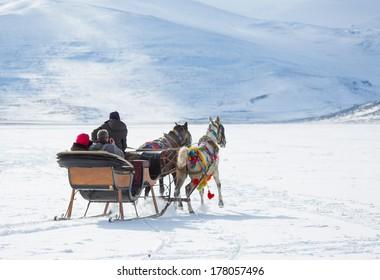 horses pulling sleigh in winter , cildir lake kars