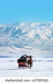 Horses pulling sleigh in winter , Cildir Lake