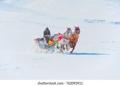 Horses pulling sleigh in winter , Cildir Lake, Kars