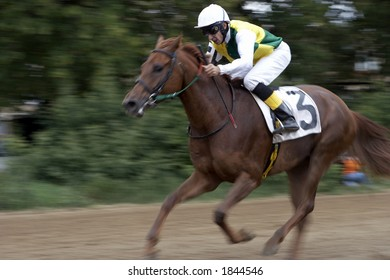 Horses racing at speed with blurred background