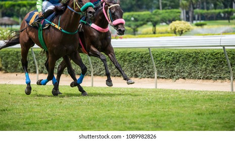 Horses are running and speeding up on the racetrack.