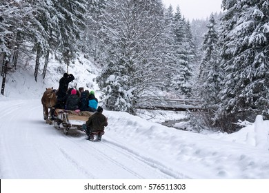 horses running  with the winter sleigh on the road