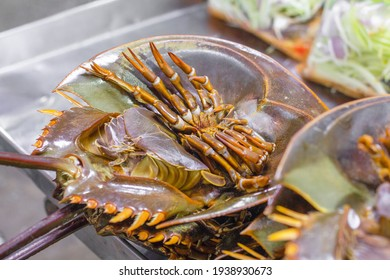Horseshoe crabs are marine arthropods of the family Limulidae, suborder Xiphosurida, and order Xiphosura. They are invertebrates, meaning that they lack a spine.