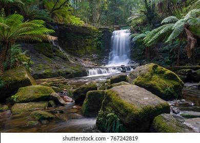 Horseshoe Falls in Mount Field National Park near Hobart, Tasmania, Australia