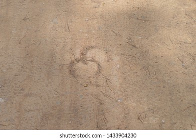 Horseshoe footprint in the sand
