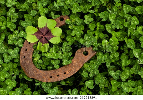 horseshoe with four leaf clover in clover field