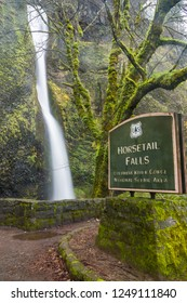 Horsetail Falls in Columbia River Gorge of the Pacific Northwest.