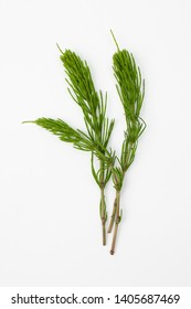 Horsetail grass contains alkaloids (equisetin, nicotine, 3-methoxypyridine), saponin equisetonin, flavonoids, organic acids