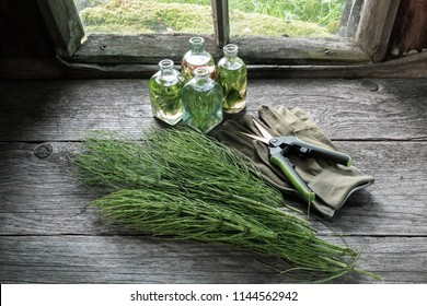 Horsetail healing herbs, bottle of infusion, gloves and garden scissors on wooden table inside the retro village house.