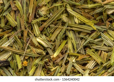 Horsetail healthy herbs detail background