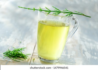 Horsetail tea. Fresh horsetail leaves on an infusion made from the plant. This remedy is thought to help stop internal bleeding,