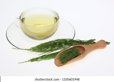 Horsetailtea, Tea, Medicinal tea, herbtea, Medicinal plant, Equisetum arvense, the field horsetail or common horsetail