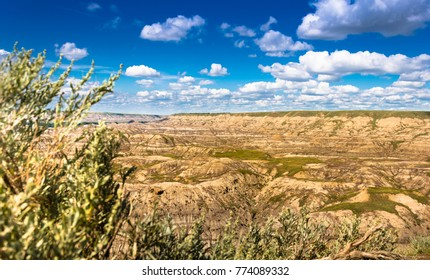 Horse-thief Canyon near Drumheller, Alberta